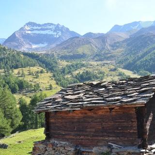 Triftalp mit Blick auf die Berge