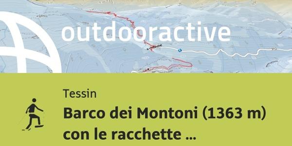 Racchette da neve in Tessin: Barco dei Montoni (1363 m) con le racchette da neve - 5.2.2019