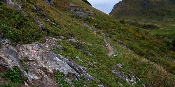 Wanderpfad an der Ravensburger Hütte (1)