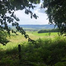 Blick vom Waldrand ins Wesertal