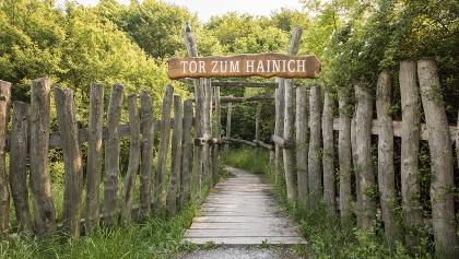 Beginn Wanderweg (Tor zum Hainich)