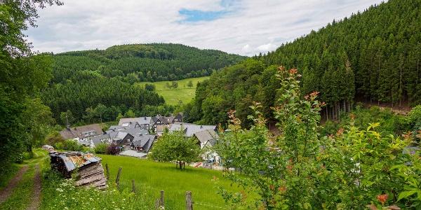 Osterwald im Schmallenberger Sauerland