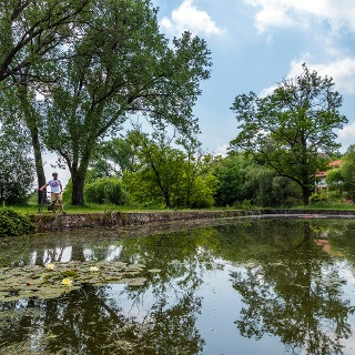 A pákozdi Bella-tó