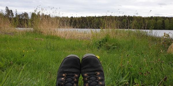 Gässviksjön