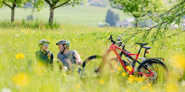 Schirningtalrunde wiese(c) TV Region OberGraz-Mias PhotoArt