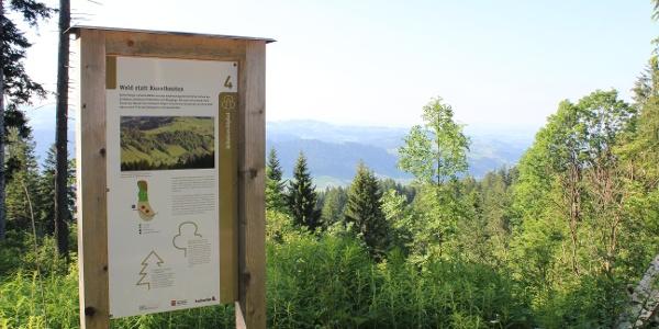 Immer wieder geniesst man eine tolle Aussicht ins Tal