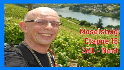 Moselsteig Etappe 15   Zell-Neef   Wandern an der Mosel   Dirk Outdoor   # 100