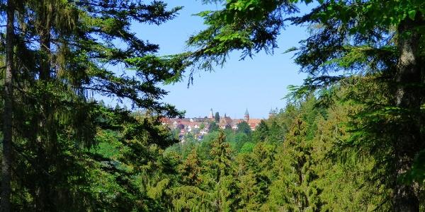 Blick von der Schöneck-Hütte auf Freudenstadt