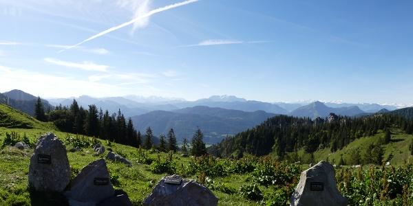 Alpenpanorama mit Gesteinsblöcken