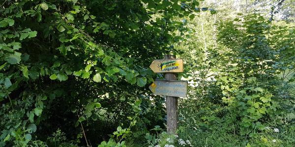 Da geht´s in Wald