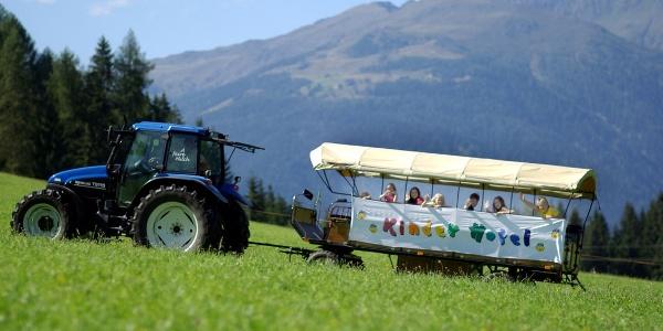 Urlaub am Bio-Bauernhof