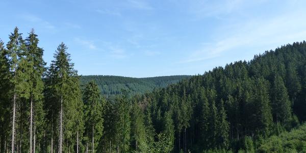 Blick Richtung Iberg