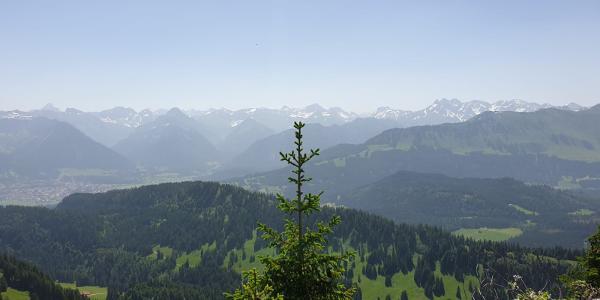 Blick auf die Allgäuer Hochalpen (Krottenkopf, Kratzer, Trettachspitze, Mädelegabel, Hohes Licht)