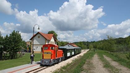 Felcsút állomás (Vál-völgyi kisvasút)