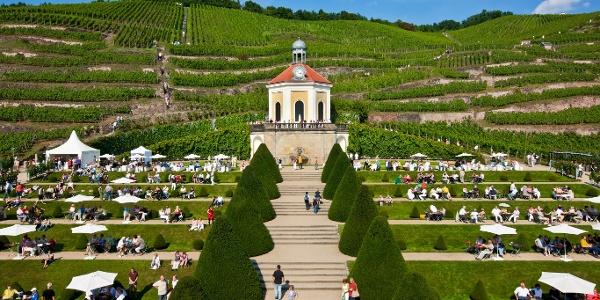 Schloss Wackerbarth Europas erstes Erlebnisweingut