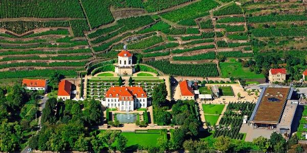 Schloss Wackerbarth Luftbild