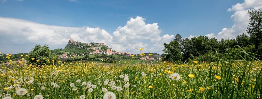 Die Riegersburg: Der Kraftplatz in der Steiermark