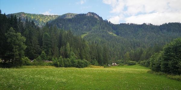 Start in der Lanau bei Mürzsteg
