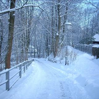 Winterkurpark und Winterwanderweg in Bad Lauterberg