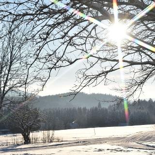 Bohlwegloipe in Hohegeiß Foto: Eva Christin Ronkainen Kolb