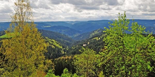 Blick vom Teisenkopfturm Richtung Süden