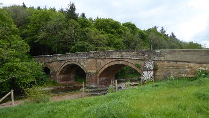 Rose Bridge