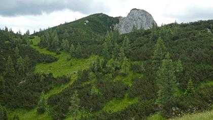 Der Gipfel des Hochtürnach