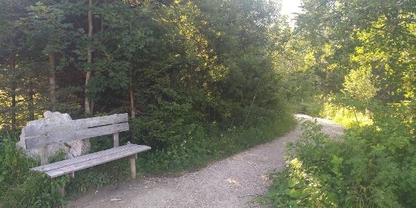 Schutzengelweg zur Rohrkopfhütte