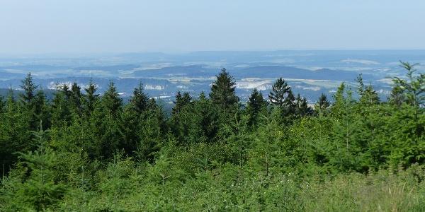 Ausblick auf das westliche Harzvorland