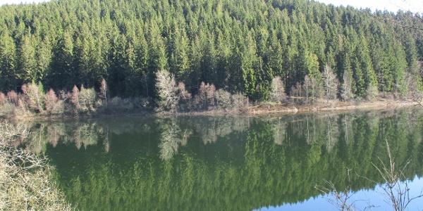 Die Route führt durch das Oberharzer Wasserregal