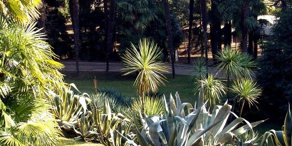 Parco Arciducale - Arco