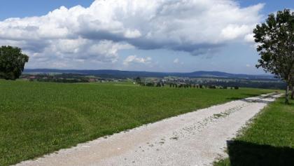 Blick in den Attergau