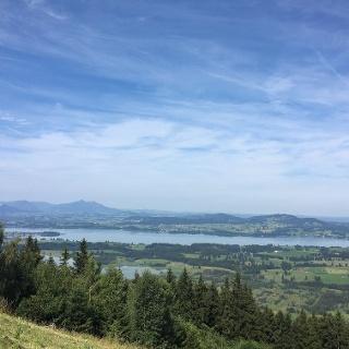 Blick vom Buchenberg auf den Forggensee