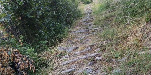 Wanderweg zwischen Berisal und Bortel