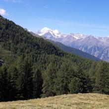 Auf dem Trail Richtung Gibidumpass