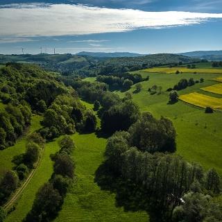 Blick in Pfälzer Bergland