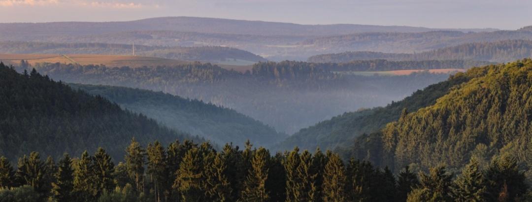 Panorama Wispertaunus