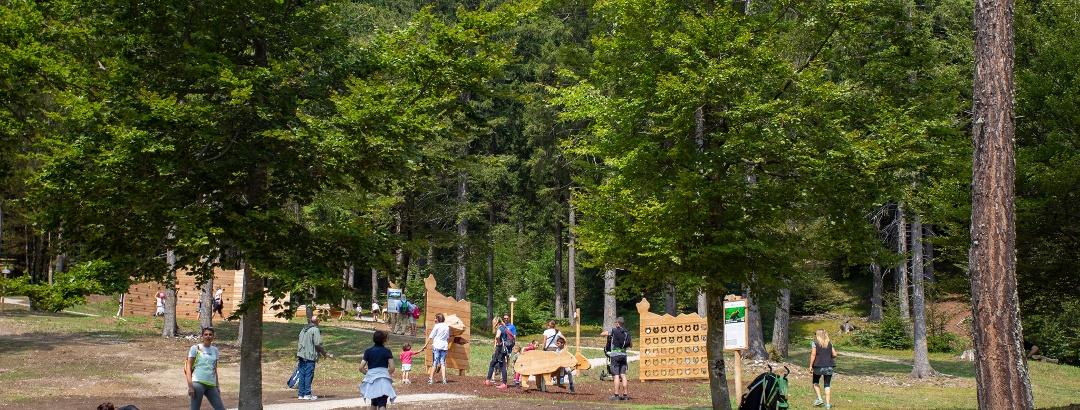 Sarnacli Mountain Park