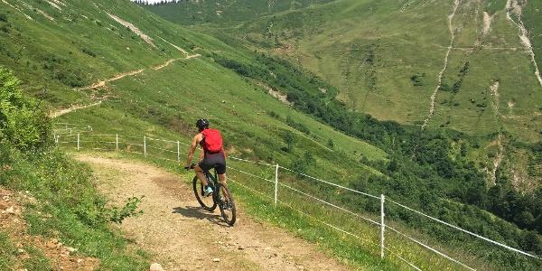 Von der Gaßner Alpe zur Plansott Alpe