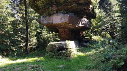 Das Naturwunder Kastelstein