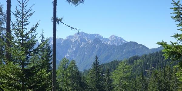 Blick zu den Steiner Alpen