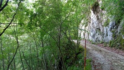 V steno uklesana pot poteka po strmih pobočjih Kolovrata