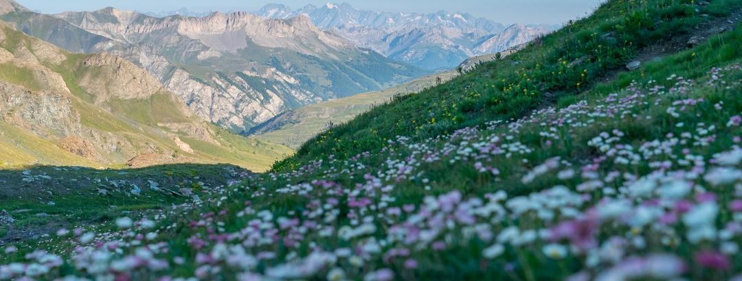 Huttentocht Parc Naturel Regional Du Queyras, Frankrijk met Bergsportreizen