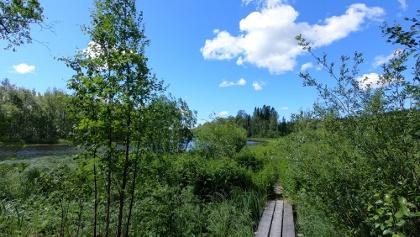Duck boards along Skaldernas Stig (The Trail of Bards)