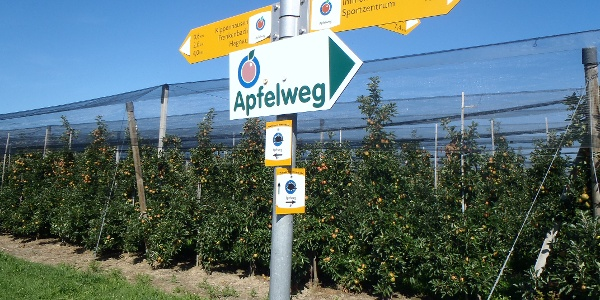 Wegweiser Apfelweg
