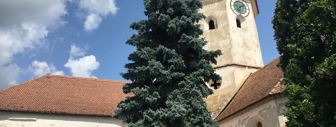 Cetatea bisericeasca din Prejmer