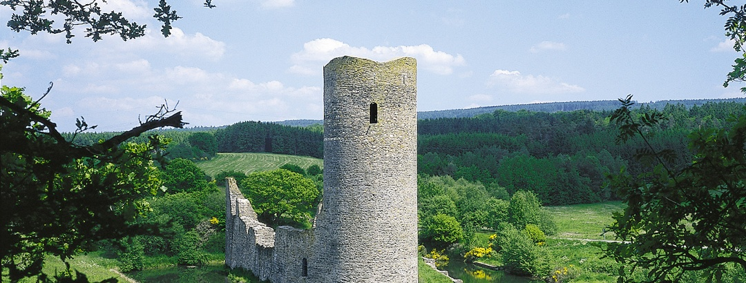 Wasserburgruine Baldenau bei Morbach-Hundheim