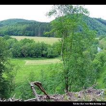 Tal der Our vom Wanderweg von der Aussicht Königslei nach Tintesmillen