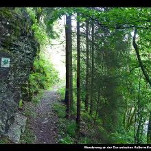 Wanderweg an der Our zwischen Kalbermillen und Europadenkmal
