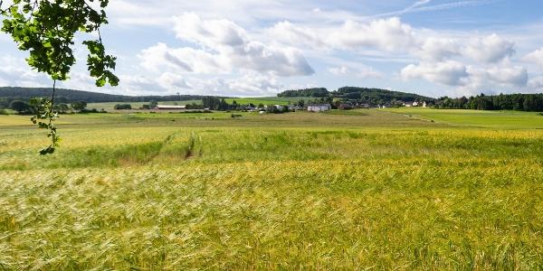 Blick über Weiler a.B. zum Herkelstein und Stockert